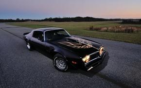 Picture Pontiac, Pontiac, Firebird, 1978, Trans Am, WS6, T-Top, Firebird.