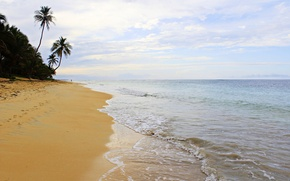 Picture sand, palm trees, the ocean, surf, Dominican Republic, Dominican Republic