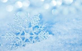 Picture macro, snowflake, snow, ice, winter, nature, bokeh, ice