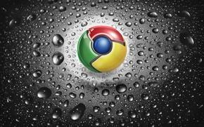 Picture drops, macro, google chrome