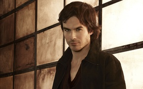 Picture the vampire diaries, Damon, Ian Somerhalder, the vampire diaries, Ian Somerhalder, Damon Salvatore, 3rd season