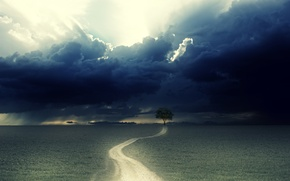 Picture road, clouds, tree