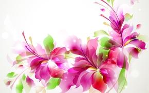 Picture flowers, pattern, figure, petals, postcard
