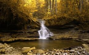 Wallpaper Switzerland, gold, autumn, stream