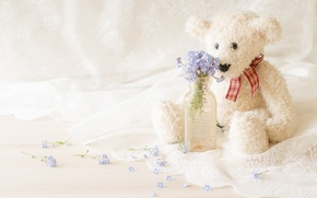 Picture flowers, toy, bottle, bear, a bunch, forget-me-nots, tulle, Teddy bear