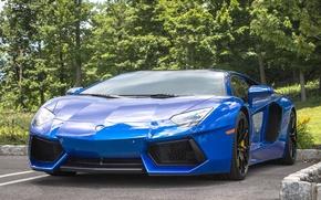 Picture Lamborghini, blue, parking, aventador