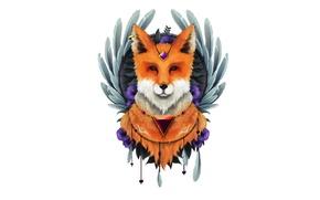 Picture minimalism, feathers, Fox, Fox, fox