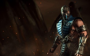Picture fighter, ninja, Sub-Zero, Sub-Zero, Mortal Kombat X, Mortal Kombat 10