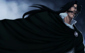 Picture game, Bleach, anime, man, asian, manga, king, japanese, cloak, god, oriental, asiatic, powerful, strong, mustache, ...