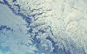Wallpaper Frost, glass, frost, window, winter