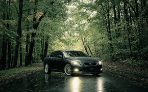 Picture road, summer, rain, Lexus