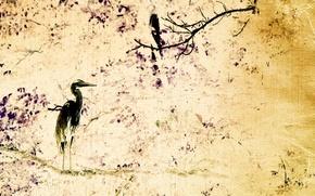 Wallpaper style, background, bird, texture