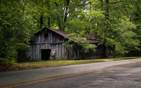 Picture road, trees, house