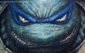 Picture TMNT, Leonardo, Wallpaper