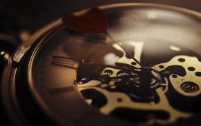 Picture macro, arrows, heart, mechanism, Watch