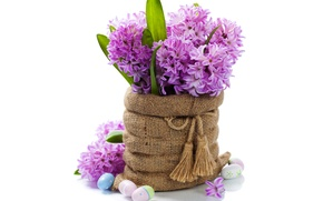 Picture eggs, bouquet, flowers, spring, easter, hyacinths, lilac