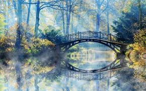 Picture Nature, Bridge, Fog, Autumn, River, Park