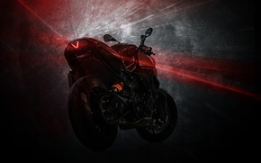 Picture F800 R, bike, Predator, Custom Bike, Vilner, BMW, tuning, motorcycle, tuning, twilight, lantern, BMW