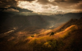 Picture clouds, mountains, birds