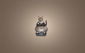 Picture cat, cat, animal, minimalism, sitting, Libra, cat, thick