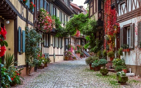 Picture flowers, street, home, Germany, bridge, Gengenbach