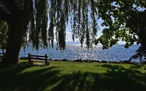 Picture lake, tree, Switzerland, benches, Switzerland, Canton of Vaud, Vaud