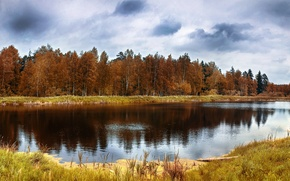 Picture autumn, forest, reflection, trees, lake, Nature, forest, trees, landscape, nature, autumn, lake, scenery, fall