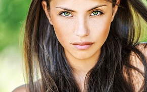 Picture Girl, green eyes, photo, beauty, lips, face, brunette, look, portrait, freckles, intense look