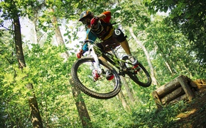 Picture forest, bike, forest, Ryder, fox, drop, suspension, downhill, the suspension, drop, full suspension, ns bike, …
