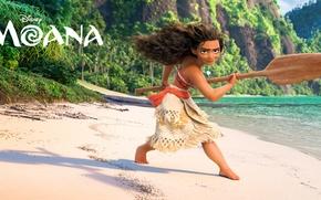 Picture sand, sea, rocks, shore, cartoon, fantasy, girl, paddle, Walt Disney Pictures, aboriginal, Moana, Moana