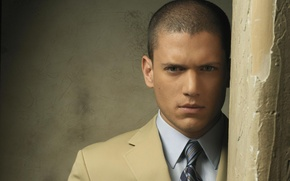Picture look, actor, male, Wentworth Miller