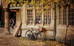 Picture autumn, leaves, trees, nature, bike, house, background, people, widescreen, Wallpaper, basket, Windows, yellow, wheel, wallpaper, …
