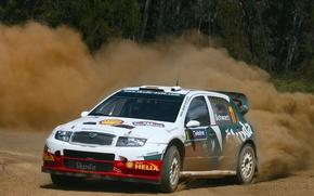 Picture dust, turn, rally, wrc, Skoda, fabia