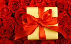 Picture drops, flowers, box, gift, roses, tape