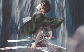 Picture forest, fog, blood, emblem, guy, cloak, swords, military uniform, Shingeki no Kyojin, drive, The Invasion …