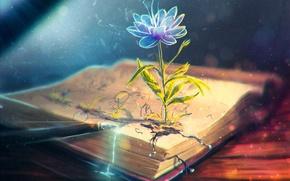 Picture flower, pen, art, handle, book, ink
