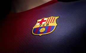 Wallpaper A new form, Football, Fc Barcelona, New Kit, 2012/13, FC Barcelona, Leopard, Club, Barca