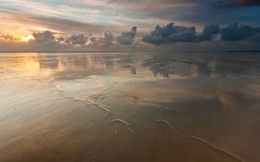 Wallpaper sea, the sky, beach, clouds