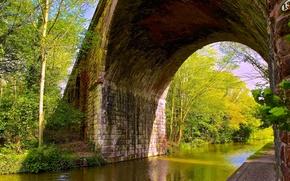 Picture trees, bridge, river, arch