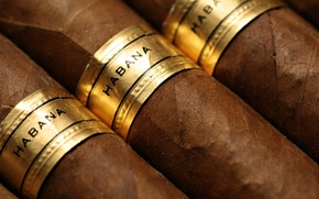 Picture brown, brand, cigars, tabacco