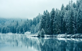Picture winter, snow, mountains, lake, overcast, tree, reflection.