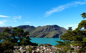 Picture mountains, lake, stones, the bushes, Argentina, Patagonia