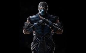 Picture ice, fighter, ninja, Sub-Zero, Sub-Zero, Mortal Kombat X, Mortal Kombat 10