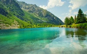 Picture greens, summer, mountains, nature, lake
