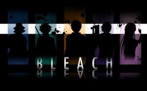 Wallpaper Inoue Orihime, bleach, Bleach Urahara, bleach, Hitsugaya Toshiro, Yasutora Chad, Kurosaki Ichigo, incognito