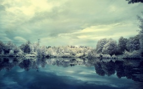 Wallpaper winter, frost, clouds, snow, trees, lake, overcast