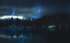 Picture forest, space, lake