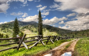 Picture road, water, mountains, landscapes, road, puddle, puddles, fences, the forests of Yellowstone