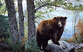 Wallpaper Morning Watch, brown bear, bear, forest, painting, nature, Charles Frace