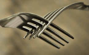 Picture macro, background, fork